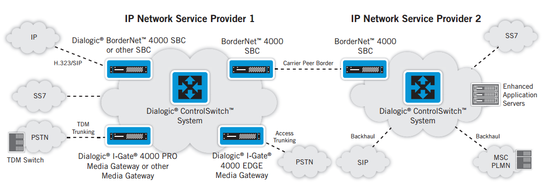 Multi-Service Dialogic ControlSwitch System Deployment