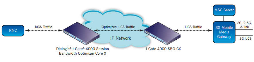 Figure 4. Next Generation Switching Network VoIP Traffic Optimization