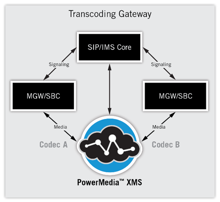 Software Transcoding Gateway